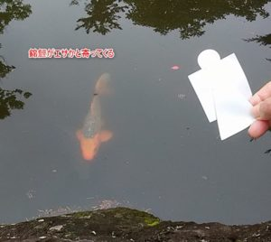 夏越大祓 茅の輪くぐり 藤岡諏訪神社