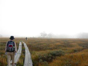 尾瀬 紅葉 ハイキングコース