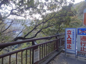 吾妻渓谷 紅葉