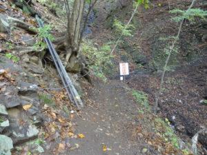 吾妻渓谷 紅葉 ハイキング