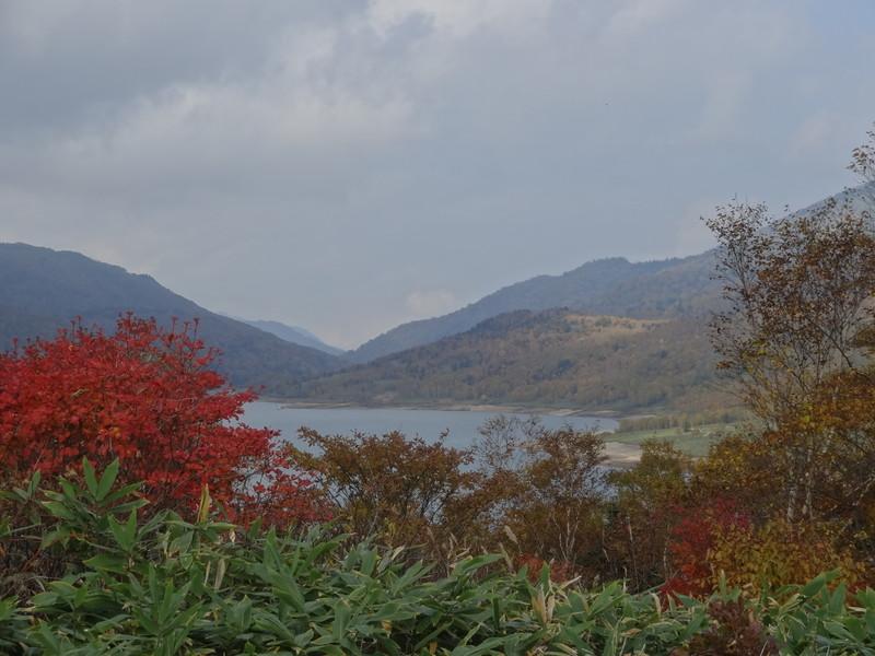 野反湖 紅葉